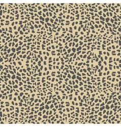 Leopard background vector