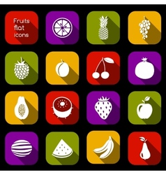 Fruits icons flat vector image