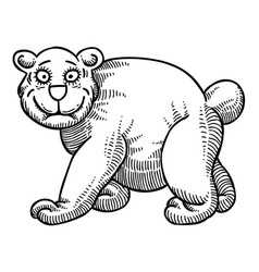 Cartoon image of bear vector