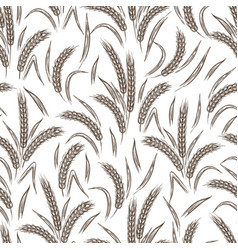 ears wheat seamless pattern vector image