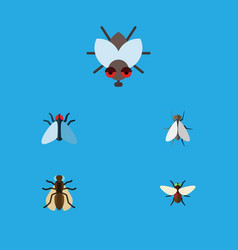 Flat icon housefly set of hum buzz housefly and vector