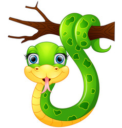 Happy green snake on the branch vector