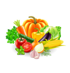 Vegetables on white background vector