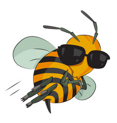 cartoon image of bee wearing sunglasses vector image