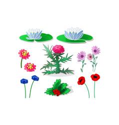 cartoon plants clip art vector image