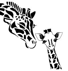 Cute giraffe family vector