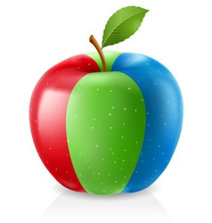 delicious rgb apple vector image