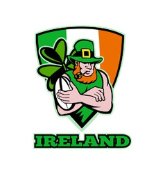 ireland rugby background vector image