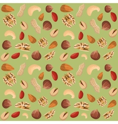 Nut mix seamless pattern vector image