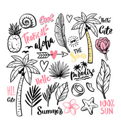 outline tropical theme with leaves vector image