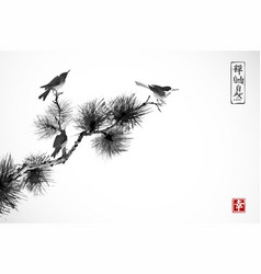 two birds on pine tree branch traditional vector image