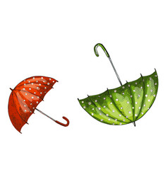 two opened green and red umbrellas isolated on vector image vector image