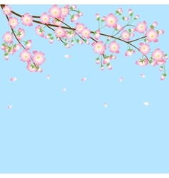 Background with cherry blossom branch vector