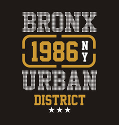 bronx urban district vector image