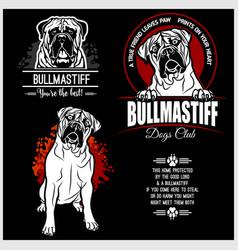 bullmastiff dog - set for t-shirt logo vector image