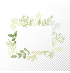 rectangular frame branches and leaves vector image