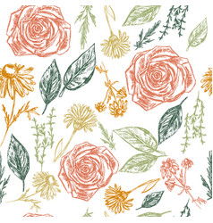 seamless pattern with botanic elements vector image