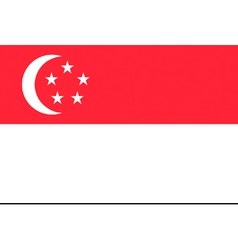 singaporean flag vector image