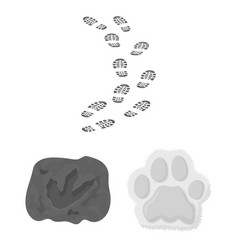 track and footstep sig vector image