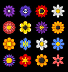 color flower icons set on black background vector image