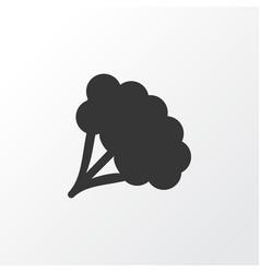 broccoli icon symbol premium quality isolated vector image