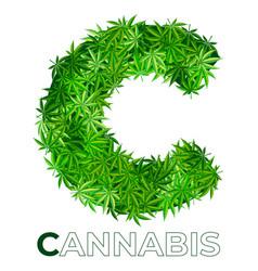 Cannabis hemp leaf logo vector