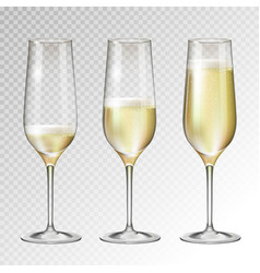 champagne glass on transperent background vector image