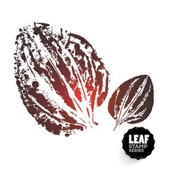 Design plantain leaf vector