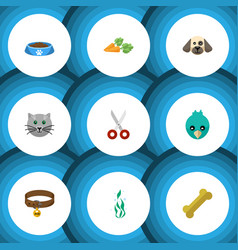 Flat icon pets set of osseous cat eating sparro vector