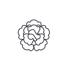 floral carnation line icon concept floral vector image