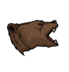 grizzly bear animal head mascot hunting and sport vector image