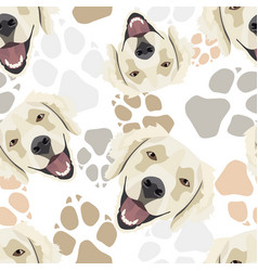 pattern dog paws golden retriever vector image