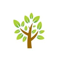 Plum-tree vector