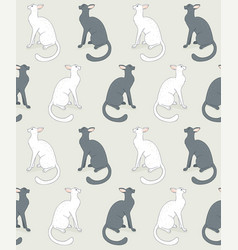 Seamless white cat vector