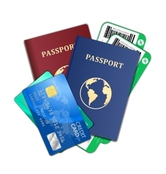 travel and tourism concept air tickets passports vector image