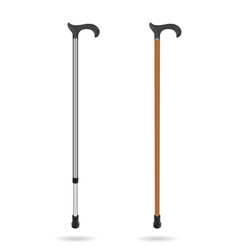 wooden cane and metal telescopic cane with elegant vector image