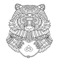 Raccoon coloring book vector
