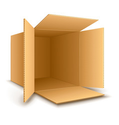 Open empty cardboard box vector image vector image