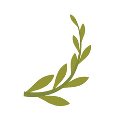 Branch olive cartoon vector