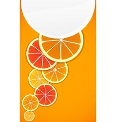 Citrus background vector