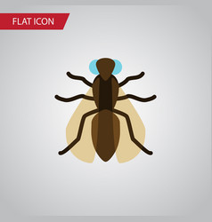 Isolated gnat flat icon mosquito element vector