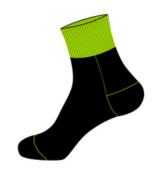 socks in on white background vector image