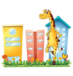 A giraffe standing in front tall buildings vector