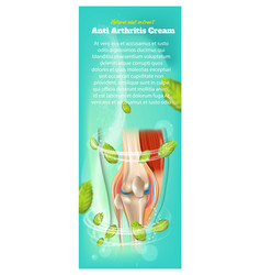 banner anti arthritis cream natural mint extract vector image