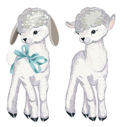 Collection lamb for design in watercolor style vector