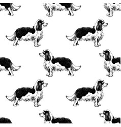 seamless pattern with hand drawn king charles vector image