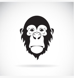monkey face design on white background wild vector image