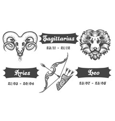 zodiac signs of aries sagittarius and leo vector image
