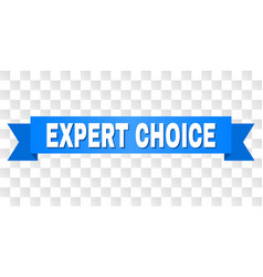 blue stripe with expert choice text vector image