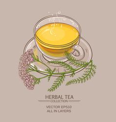 cup of yarrow tea vector image